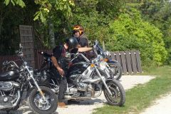 k-5-Jahre-113Viking-Rider